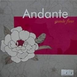 Каталог Andante grande fleur Marburg